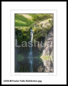 4296-M Foster Falls Refeliction
